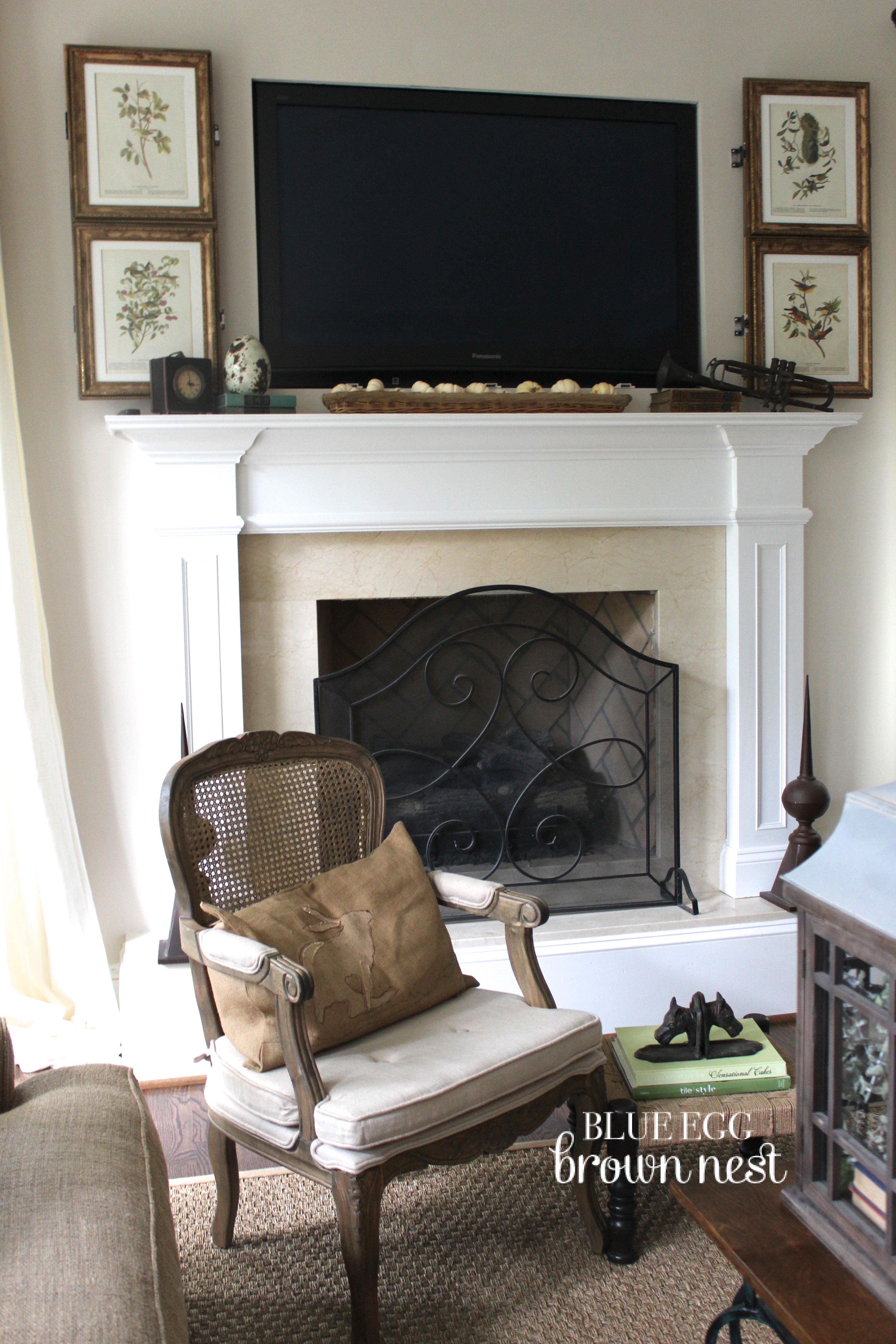 introducing the blue egg brown nest tv hide seek screen. Black Bedroom Furniture Sets. Home Design Ideas