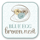 blue egg brown nest