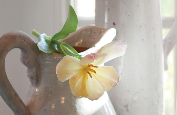 flowerimagetake3