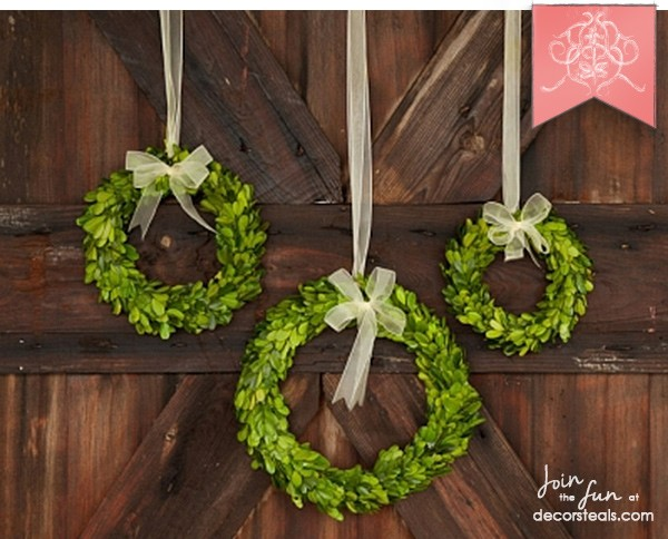 Preserved-Boxwood-Wreath